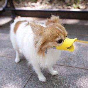 quack-muzzle
